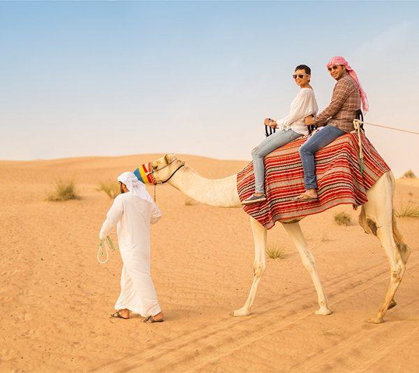 Dubai Desert Camel Safari
